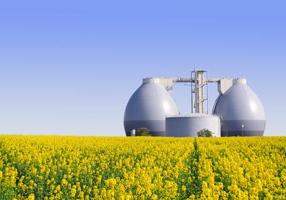 Energia odnawialna, Biogazownie, Biospalarnie